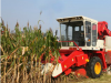 雷沃玉米收割机