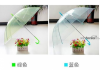 定制广告伞,雨花太阳伞