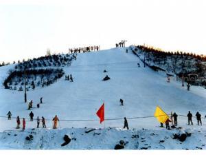 黑龙江省内旅游信息-帽儿山体院5S滑雪一日游