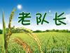 老队长水稻种植农民专业合作社